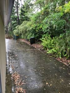 A wet driveway during a pest control in the rain treatment.