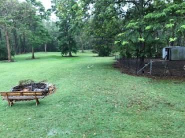 Pest Control In The Rain