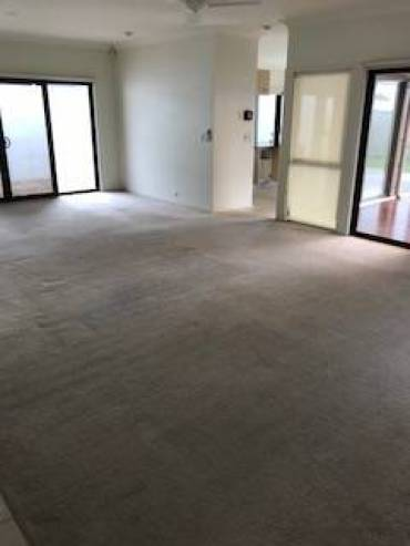 End Of Lease Pest Control in Brisbane