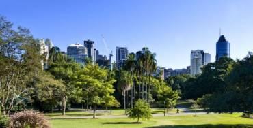 Pest Control Brisbane Services