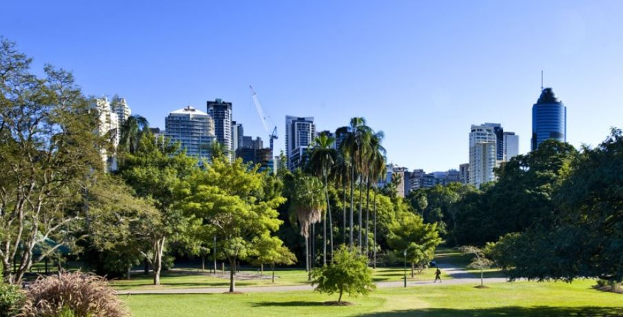 Picture looking at Brisbane City from Botanical Gardens