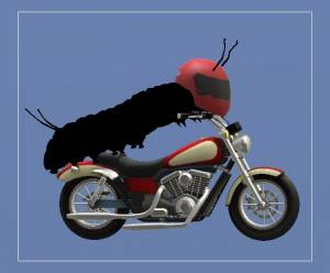 Animation of a bug on a motor bike