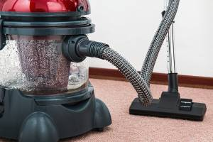 Vacuum cleaner gets rid of flea eggs and flea problem