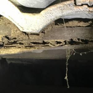 Termite Workings In Roof Void Battens