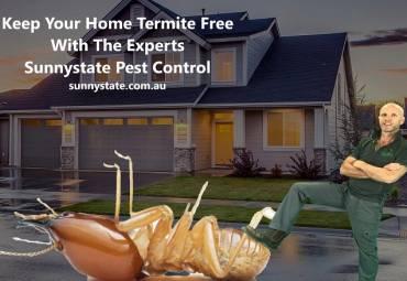Termites Like & Need Moisture