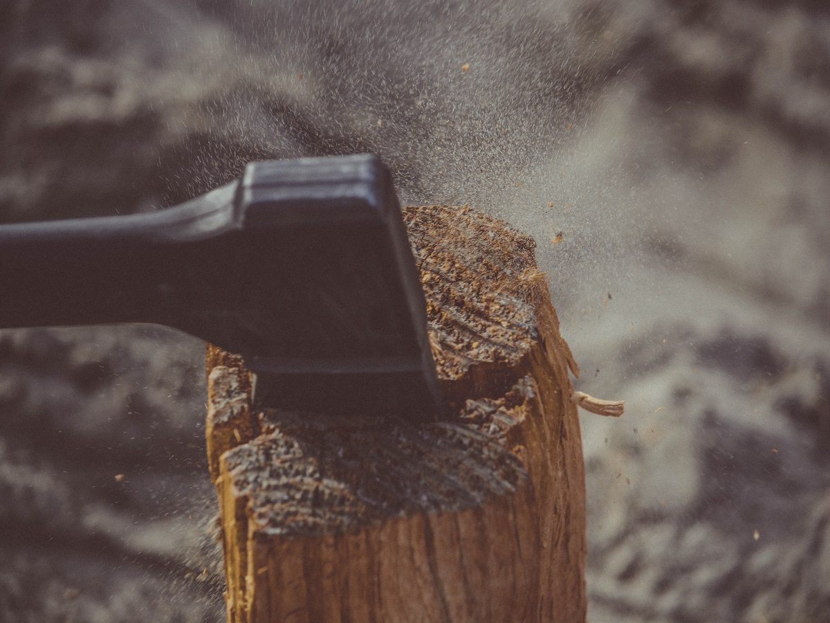 termite tip remove tree stumps by hand