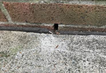 Weep holes may allow termites easy entry