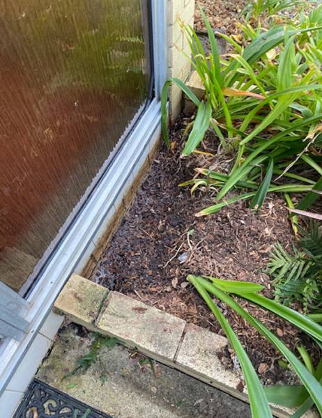 Garden bed against extenal wall leading to termite entry to the home
