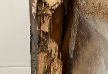 Termite damage customer experience