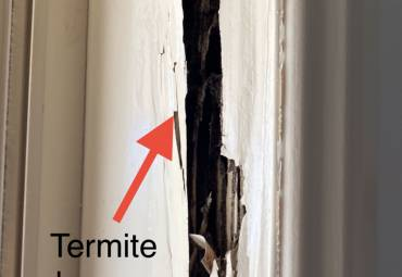 Trelona Termite Protection For Homes
